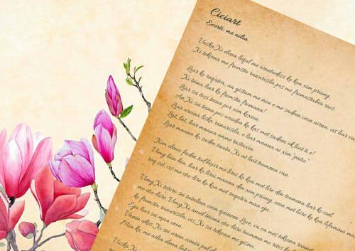 タニカの日記